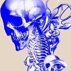 Anatomy  by DesignBakery