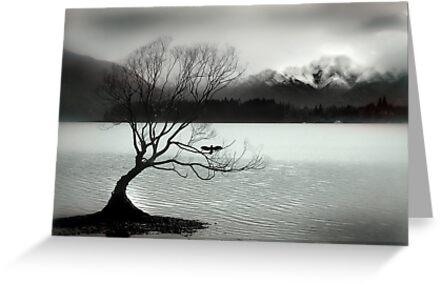 Wanaka by Craig Mitchell