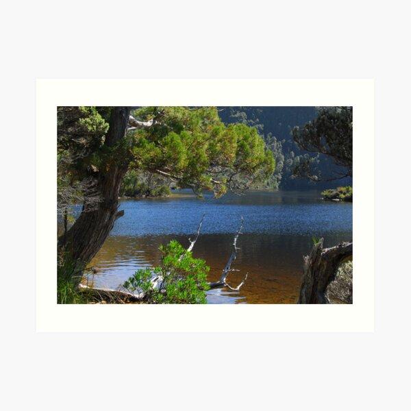 Pristine landscape Art Print