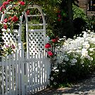 Picket Fence and Garden Gate by Marjorie Wallace