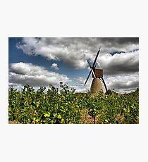 Moulin de la Montangne Photographic Print