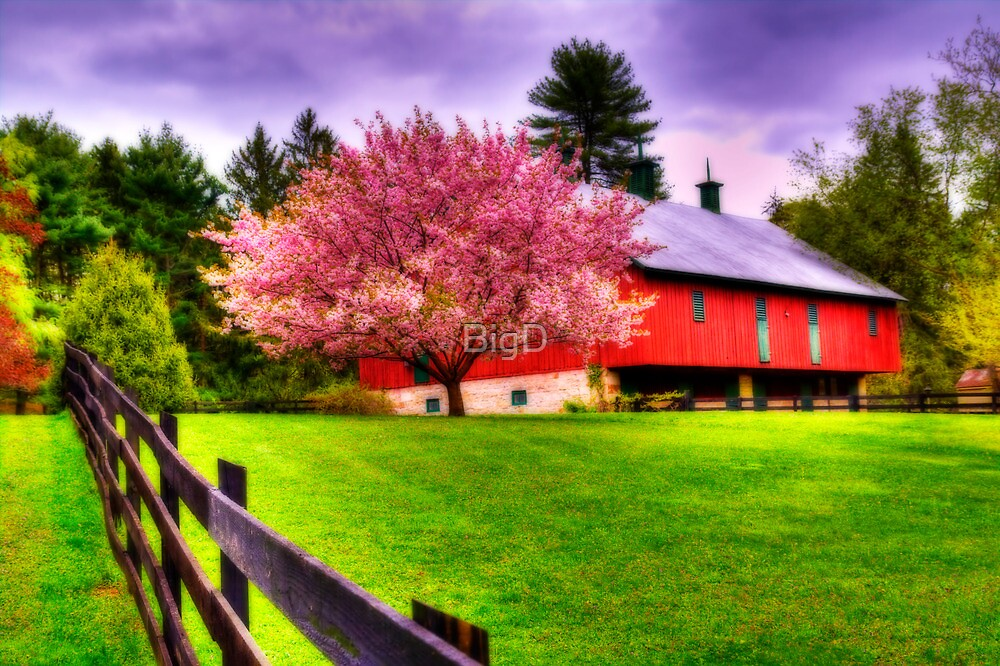 Spring in Clarks Valley-Pennsylvania by BigD