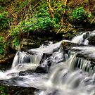 LEAVITT FALLS SPRING  by MIKESANDY