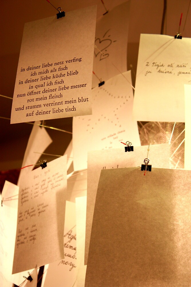 letters and thoughts - shop window in Venice by armgw