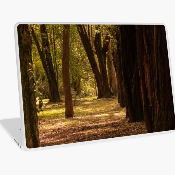 Floresta Marrom Laptop Skin