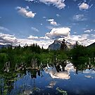 Vermillion Lakes, Banff NP by Teresa Zieba