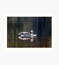Water World - Sunbathing Art Print