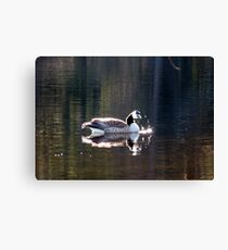 Water World - Sunbathing Canvas Print