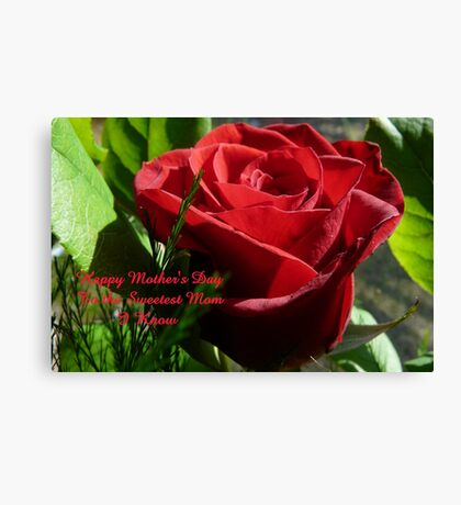 Rose for Mother's Day,..card Canvas Print