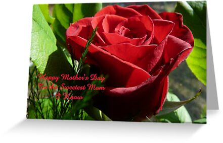 Rose for Mother's Day,..card by MaeBelle