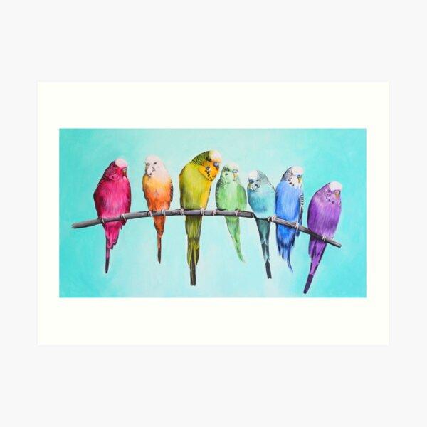 Rainbow Budgies Art Print