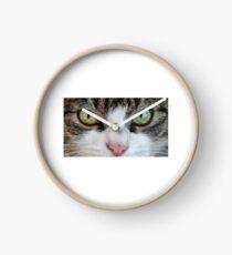 Cat Stare Down Clock