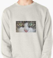 Cat Stare Down Pullover