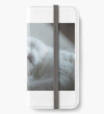 Cat OMG iPhone Wallet/Case/Skin