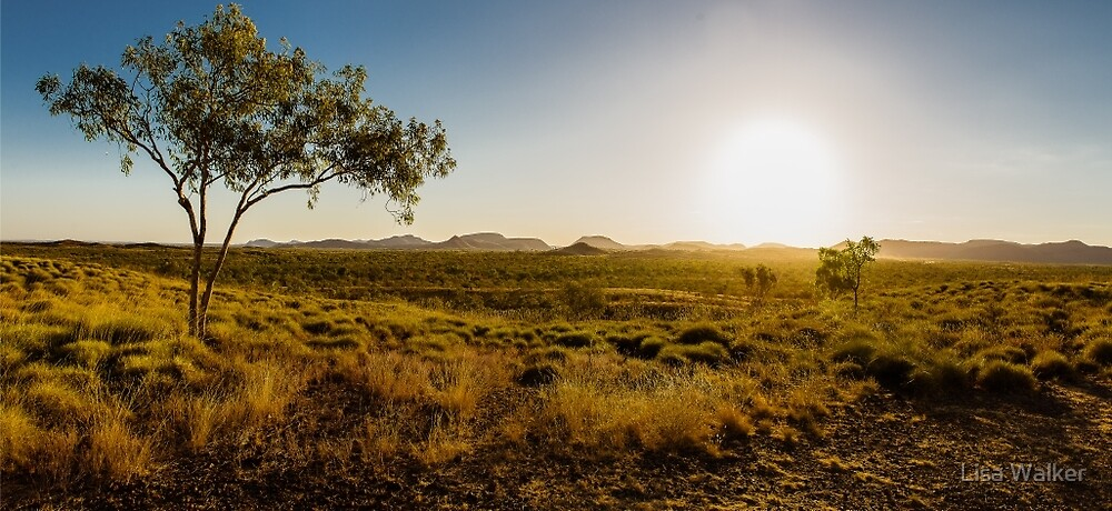 Sunset over the Ord Valley, Western Australia by Lisa Walker