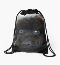 Sky, An Arizona Mini-Toy Poodle Drawstring Bag