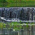 Small waterfall by Susan Blevins