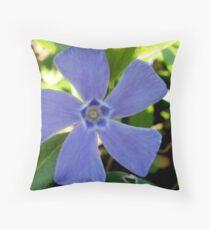 Flower Windmill - Altamont Gardens Co. Carlow Throw Pillow