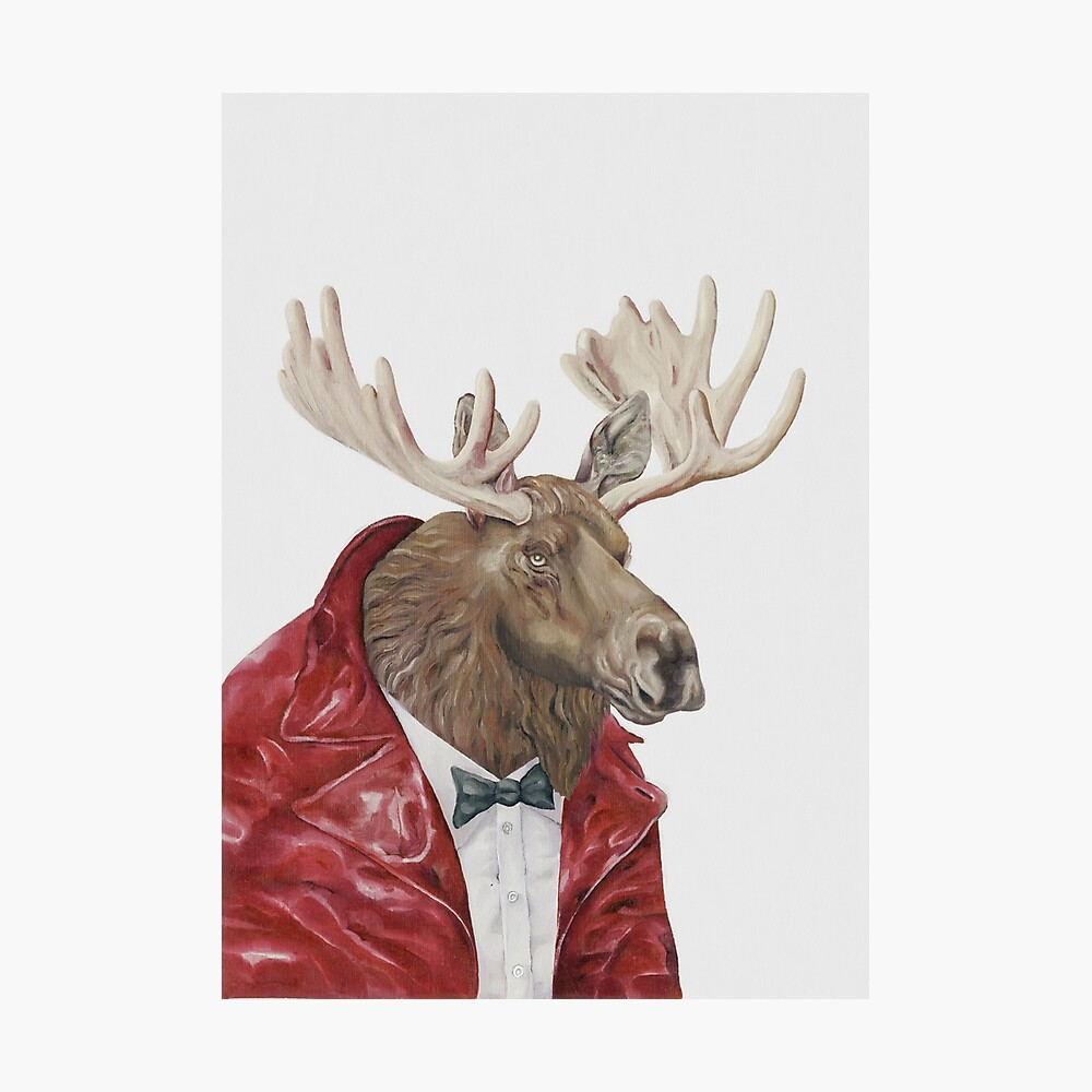 Moose in Leather Photographic Print
