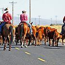 Cattle Drive by Julia Washburn
