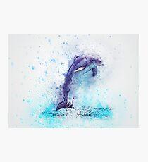Dolphin Illustration Photographic Print