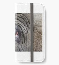 Elephant Eye iPhone Wallet/Case/Skin