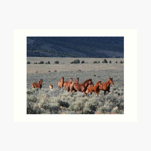 High Desert Band Art Print