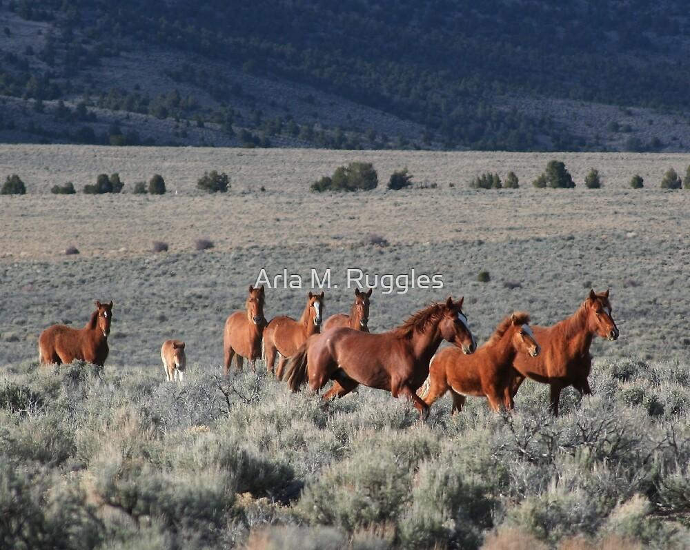 High Desert Band by Arla M. Ruggles