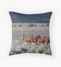 High Desert Band Throw Pillow