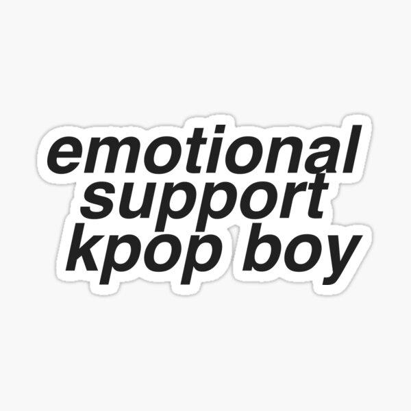 emotional support kpop boy kpop meme sticker  Sticker