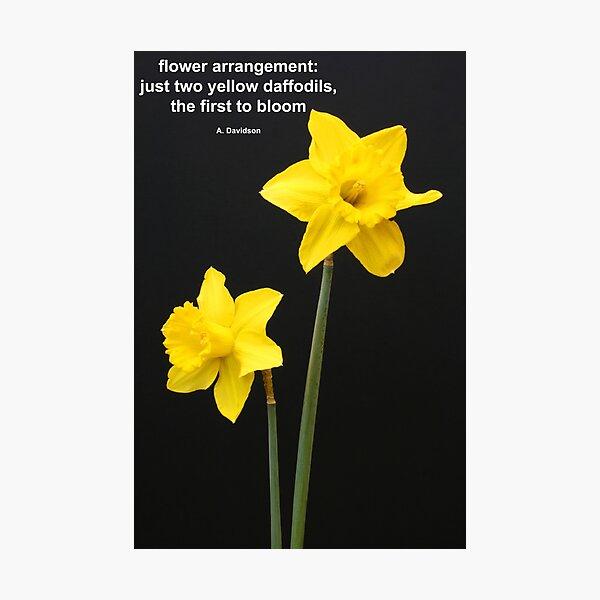 Daffodils Quotation Photographic Print