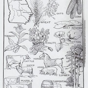 Mapa Agrícola Vintage de Georgia (1915) de BravuraMedia
