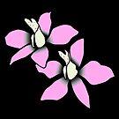 wundervolle pinke Blüten, Blumen, pink, rosa von rhnaturestyles
