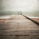 Timeless Way by Caroline Gorka