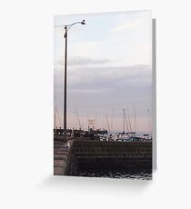 The Look Outs Greeting Card