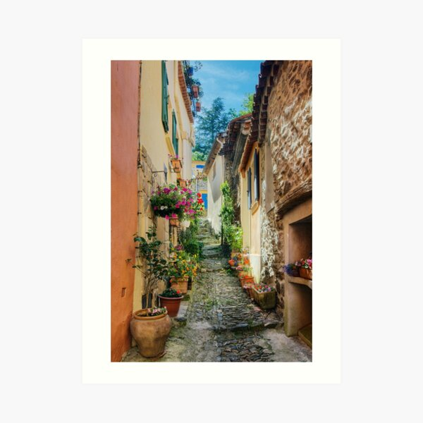 A narrow street in Provence village Art Print