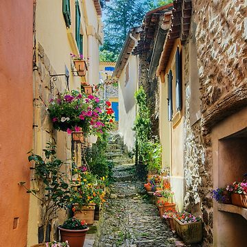 A narrow street in Provence village by patmo