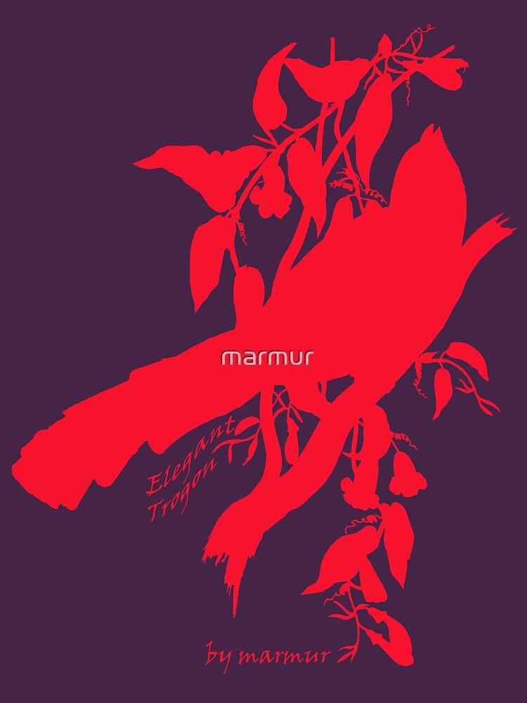 Red Elegant Trogon silhouette by marmur