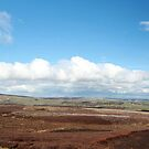 Reeth Panoramic by Paul Thompson Photography