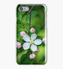 Spring Blossoms iPhone Case/Skin