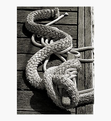 All Tied Up Photographic Print