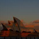 Sunset over Sydney Harbour by TrinityCentaur