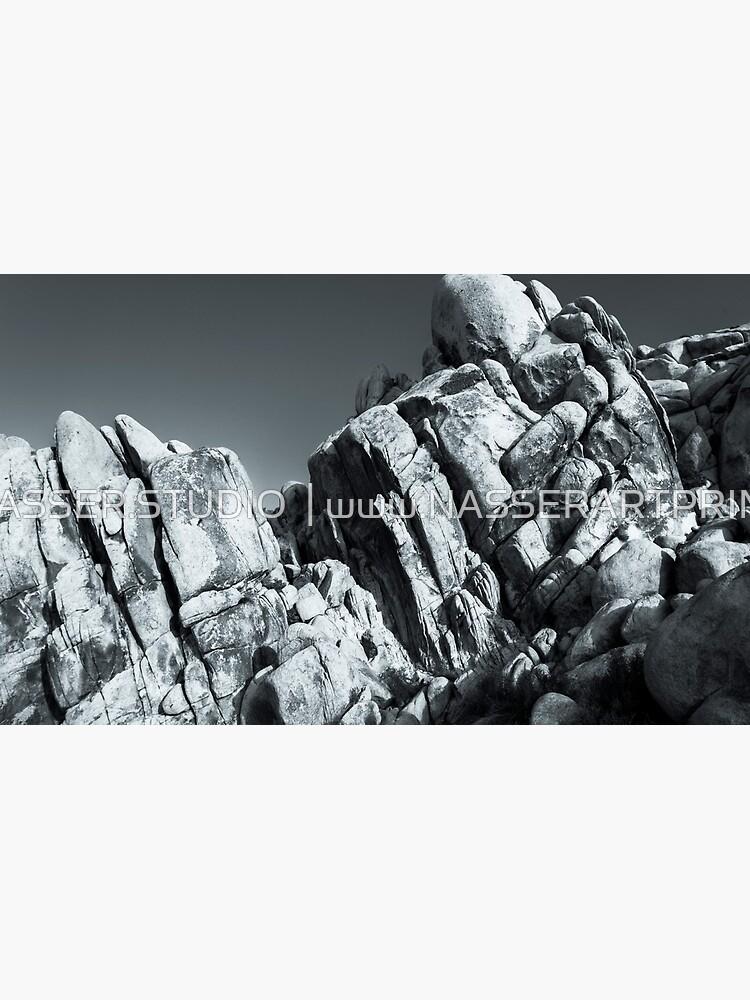 Big Rock Joshua Tree 5793 by neptuneimages