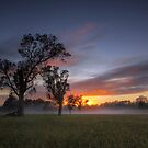 Badgery's Creek Sunrise by Malcolm Katon