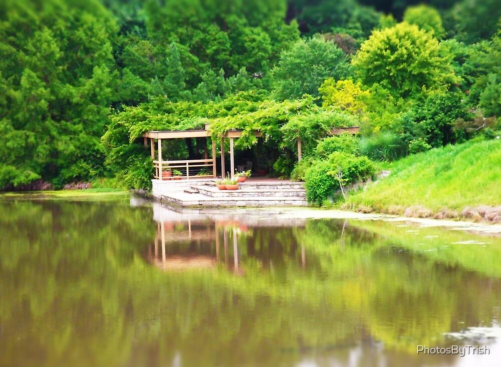 Dock on Water Tilt Shift Photo by PhotosByTrish