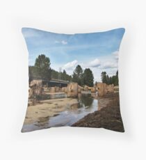 Pilons from ground zero Throw Pillow