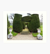 Topiary! Art Print