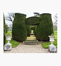 Topiary! Photographic Print
