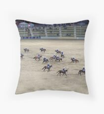 RES 2010 - 02 Throw Pillow