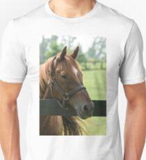Creator - Old Friends Equine, Kentucky T-Shirt